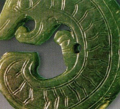 方块形花纹的蛇